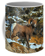 Blending In In Jasper Coffee Mug