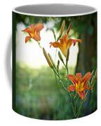 Bloom Where You're Planted Coffee Mug