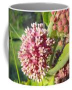 Blooming Milkweed Flowers Coffee Mug