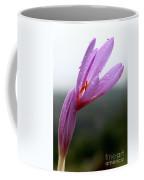 Blooming Purple Flower Coffee Mug
