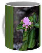 Blossom In Pink Coffee Mug