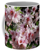 Blossoming Almond Branch Coffee Mug
