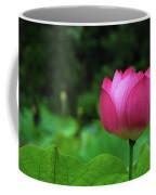 Blossoming Lotus Flower Closeuop Coffee Mug
