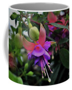 Blossoms And Blooms Coffee Mug