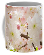Blossoms Art Print 53 Sunlit Pink Tree Blossoms Macro Springtime Blue Sky  Coffee Mug