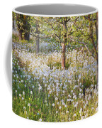 Blossoms Growing In A Fruit Orchard In Coffee Mug