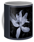 Blossoms In Black And White Coffee Mug