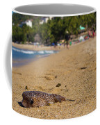 Blowfish Offshore  Coffee Mug