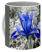 Blue Along Coffee Mug