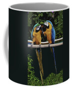 Blue And Gold Macaw 1 Coffee Mug