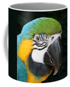 Blue And Gold Macaw Freehand Painting Square Format Coffee Mug