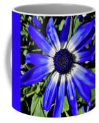 Blue And White African Daisy Coffee Mug
