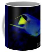 Blue And Yellow Fish Coffee Mug
