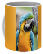Blue And Yellow Macaw Vertical Coffee Mug