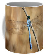 Blue Beauty Coffee Mug