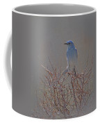 Blue Bird Colored Pencil Coffee Mug