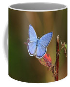 Blue Butterfly On Leaf Coffee Mug
