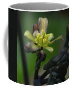 Blue Cohosh 1 Coffee Mug