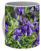 Blue Columbine Coffee Mug