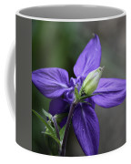 Blue Columbine Squared 1 Coffee Mug