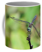 Blue Dasher Dragonfly On A Branch Coffee Mug
