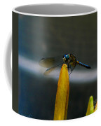 Blue Dhasher Dragonfly Coffee Mug