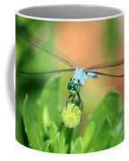 Blue Dragonfly And Bud Coffee Mug