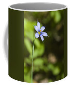 Blue-eyed Grass IIi Coffee Mug