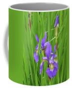 Blue Flag Iris-1  Coffee Mug