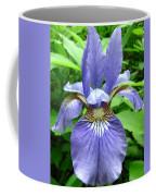 Blue Flag Iris Coffee Mug