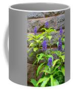 Blue Ginger At The Wall Coffee Mug
