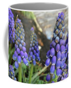 Blue Grape Hyacinths Coffee Mug