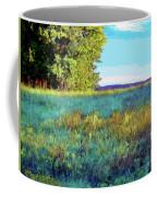 Blue Grass Sunny Day Coffee Mug