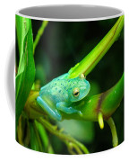 Blue-green Tropical Frog Coffee Mug