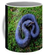 Blue Hognose Coffee Mug