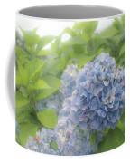Blue Hydrangea At Rainy Garden In June, Japan Coffee Mug