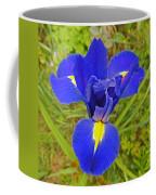 Blue Iris Beauty Coffee Mug