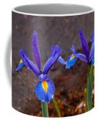 Blue Iris Germanica Coffee Mug
