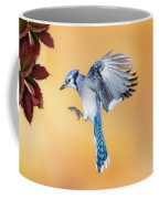 Blue Jay Beauty Coffee Mug