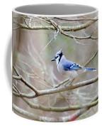 Blue Jay Coffee Mug by George Randy Bass