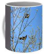 Blue Jay Mobbing A Crow Coffee Mug