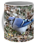 Blue Jay With A Full Mouth Coffee Mug