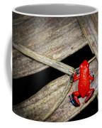 Blue Jeans Frog Coffee Mug