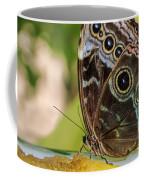 Blue Morpho Butterfly Morpho Peleides  Coffee Mug