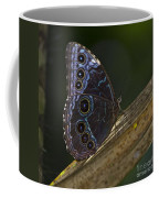 Blue Morpho.. Coffee Mug