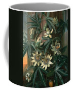 Blue Passion Flower For The  Temple Of Flora By Robert Thornton Coffee Mug