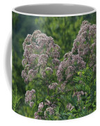 Blue Ridge Flowers Coffee Mug