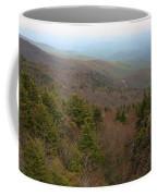 Blue Ridge View Coffee Mug