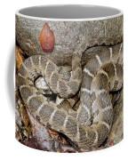 Montreat Water Snake Coffee Mug