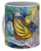 Blue Ring Angelfish Coffee Mug by Hailey E Herrera